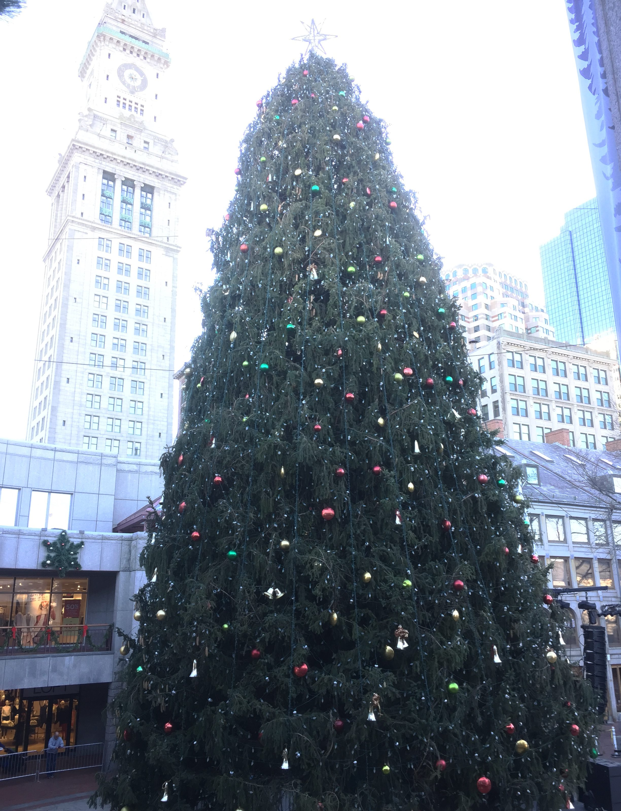 Boston Faneuil Hall Christmas tree