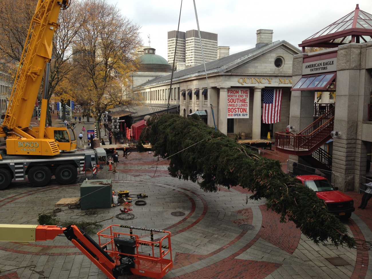 World's Largest & Tallest Christmas Trees, Delivery