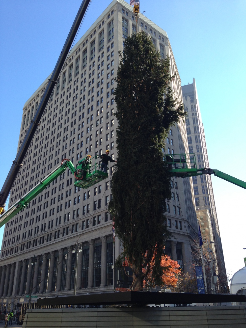 detroitopening-tied-tree