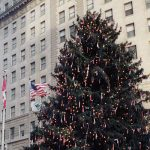 Natural Tall Christmas Trees - Egan Acres Tree Farm